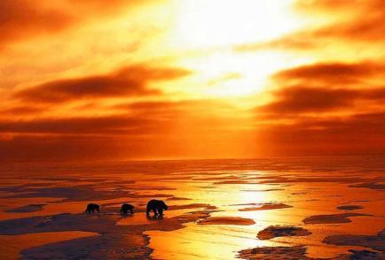 es-kutub-utara