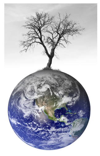 global-warming-earth